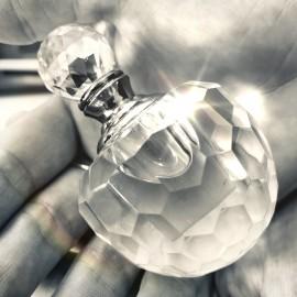 SCD Oil Image